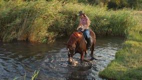 Jong meisje met haar paard die in meer zwemmen langzaam stock video