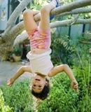 Jong meisje op boom Stock Afbeeldingen