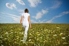 Jong meisje op een bloemgebied Royalty-vrije Stock Foto's