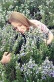Mooi jong meisje op een grasgebied van rozemarijn Royalty-vrije Stock Foto's