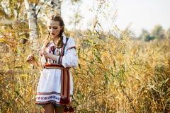 Jong meisje op het de zomergebied in nationale Witrussische kleren, fas Royalty-vrije Stock Afbeeldingen