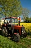 Jong meisje op tractor op canolagebied. Stock Foto