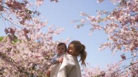 Jong moedermamma die haar houden weinig de jongenskind van de babyzoon onder tot bloei komende SAKURA Cherry-bomen met dalende ro stock footage