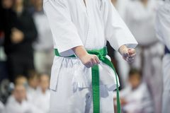 Jong, mooi en succesvol karatejong geitje in karatepositie S stock fotografie