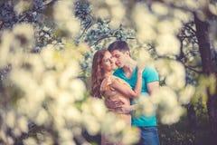Jong mooi paar in liefde onder appelbomen Stock Afbeeldingen