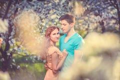 Jong mooi paar in liefde onder appelbomen Royalty-vrije Stock Foto