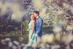 Jong mooi paar in liefde onder appelbomen Royalty-vrije Stock Afbeeldingen