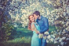 Jong mooi paar in liefde onder appelbomen Royalty-vrije Stock Fotografie