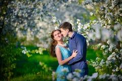 Jong mooi paar in liefde onder appelbomen Stock Fotografie