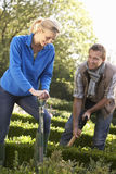Jong paar dat in tuin werkt Stock Foto's