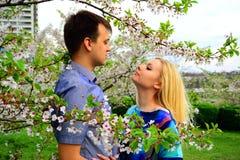 Jong paar in de tuin van sakura in park Stock Foto's