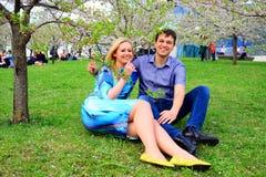 Jong paar in de tuin van sakura in park Royalty-vrije Stock Afbeelding
