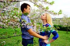 Jong paar in de tuin van sakura in park Stock Foto