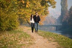 Jong Paar die in Autumn Forest lopen stock foto