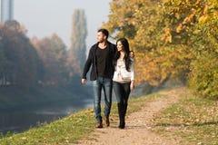 Jong Paar die in Autumn Forest lopen royalty-vrije stock foto's