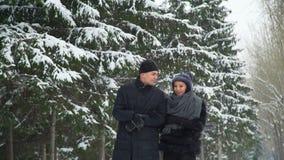 Jong paar die in de winterpark lopen stock video