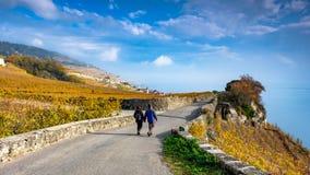 Jong paar die in het mooie Lavaux-wijnmakerijgebied dichtbij Chexbres, richting Montreux in Zwitserland wandelen Mooi Autumn Colo stock afbeeldingen