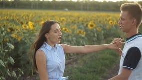Jong paar die in liefde in de avond bij zonsondergang op een gebied van zonnebloemen dansen stock video