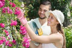 Jong Paar die samen tuinieren Stock Foto's
