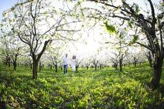 Jong paar in liefde die in de tuin van de de lentebloesem lopen Royalty-vrije Stock Foto's
