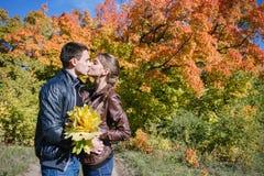 Jong paar in liefde, kus, de herfst Royalty-vrije Stock Afbeelding
