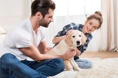 Jong paar met puppy Stock Foto