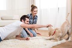 Jong paar met puppy Stock Afbeeldingen