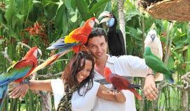 Jong paar met tropische vogels Stock Fotografie