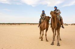 Jong paar op kamelen Stock Foto's