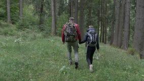 Jong sportief paar met rugzakken die een gang nemen door bergbos die hand in hand de verbazende mening ophouden te bewonderen - stock footage