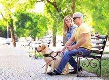Jong vrouw en blinde met de zitting van de gidshond Stock Foto