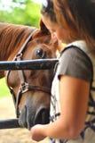 Jong vrouwen voedend paard Royalty-vrije Stock Afbeeldingen