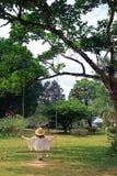 Jong wijfje met strohoed het ontspannen op een houten schommeling in de tuin stock foto
