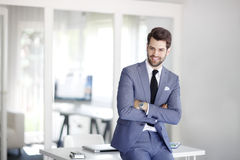 Jong zakenmanportret royalty-vrije stock foto