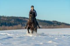 Jong Zweedse die haar Ijslands paard in diepe sneeuw en zonlicht berijden stock foto