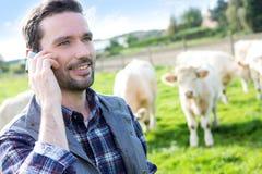 Jonge aantrekkelijke landbouwer die mobiele telefoon op een gebied met behulp van Stock Afbeelding