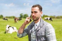 Jonge aantrekkelijke landbouwer in een weiland met koeien mobiel gebruiken Stock Afbeelding
