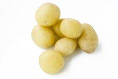 Jonge aardappels Royalty-vrije Stock Afbeeldingen