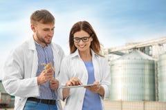 Jonge agronomen dichtbij moderne graanschuuren stock afbeelding