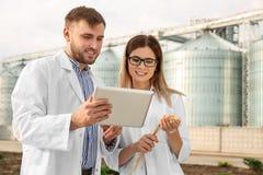 Jonge agronomen dichtbij moderne graanschuuren royalty-vrije stock afbeeldingen
