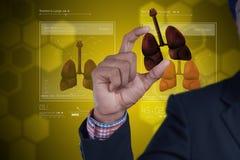 Jonge arts die longen tonen Royalty-vrije Stock Foto