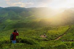Jonge Aziatische fotograaf die in theegebieden reizen met mist Yo Stock Foto