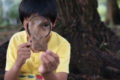 Jonge Aziatische jongen die een blad waarnemen die vergrootglas met behulp van royalty-vrije stock fotografie