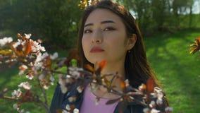 Jonge Aziatische vrouw in de bloeiende tuin van kersenbloesems stock video