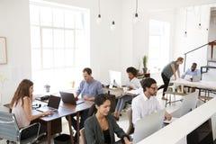 Jonge bedrijfscollega's die bij computers in een bureau werken stock foto's