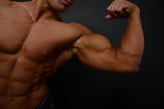 Jonge bodybuilder royalty-vrije stock foto