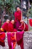 Jonge boeddhistische monniken stock afbeelding