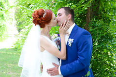 Jonge bruid en bruidegomgang in aard Stock Afbeeldingen