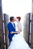 Jonge bruid en bruidegomgang in aard Royalty-vrije Stock Foto's