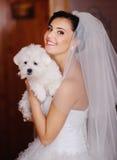 Jonge bruid met een uiterst kleine hond Stock Fotografie